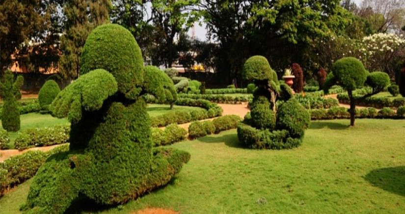 botanical-gardens6.jpg